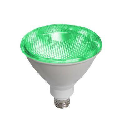 Led Lamp PAR38 E27 10W Green